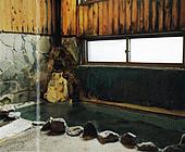 奥蓼科温泉 渋の湯